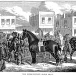 Kirk's Horse Bazaar